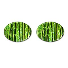 Bamboo Cufflinks (oval) by Siebenhuehner