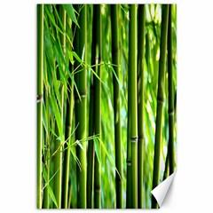 Bamboo Canvas 12  X 18  (unframed) by Siebenhuehner