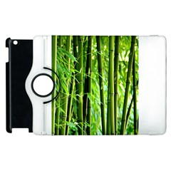 Bamboo Apple Ipad 2 Flip 360 Case by Siebenhuehner