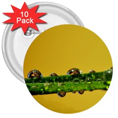 Drops 3  Button (10 Pack) by Siebenhuehner