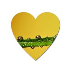 Drops Magnet (heart) by Siebenhuehner