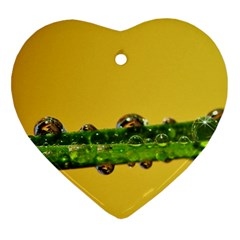 Drops Heart Ornament (two Sides) by Siebenhuehner