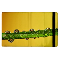 Drops Apple Ipad 3/4 Flip Case by Siebenhuehner