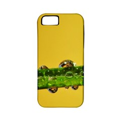 Drops Apple Iphone 5 Classic Hardshell Case (pc+silicone) by Siebenhuehner