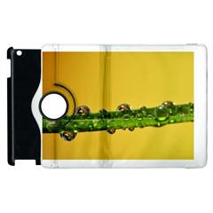 Drops Apple Ipad 2 Flip 360 Case by Siebenhuehner