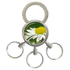 Daisy With Drops 3 Ring Key Chain by Siebenhuehner