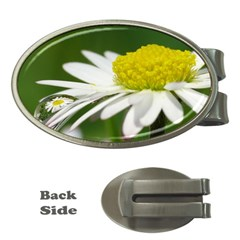 Daisy With Drops Money Clip (oval) by Siebenhuehner