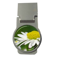 Daisy With Drops Money Clip (round) by Siebenhuehner