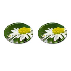 Daisy With Drops Cufflinks (oval) by Siebenhuehner