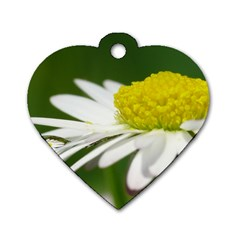 Daisy With Drops Dog Tag Heart (Two Sided)