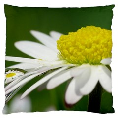 Daisy With Drops Large Cushion Case (single Sided)  by Siebenhuehner