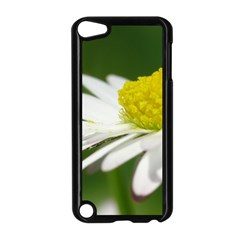 Daisy With Drops Apple Ipod Touch 5 Case (black) by Siebenhuehner