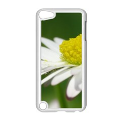 Daisy With Drops Apple Ipod Touch 5 Case (white) by Siebenhuehner