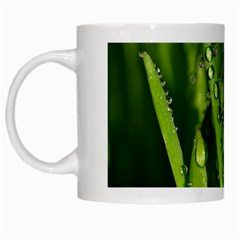 Grass Drops White Coffee Mug by Siebenhuehner