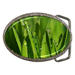 Grass Drops Belt Buckle (oval) by Siebenhuehner
