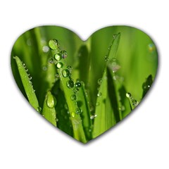 Grass Drops Mouse Pad (heart) by Siebenhuehner