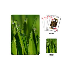 Grass Drops Playing Cards (mini)