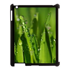 Grass Drops Apple Ipad 3/4 Case (black) by Siebenhuehner