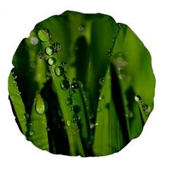 Grass Drops 18  Premium Round Cushion  by Siebenhuehner