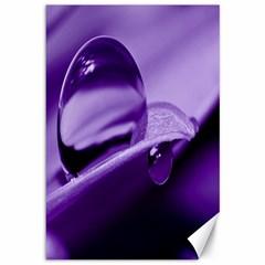 Drops Canvas 12  X 18  (unframed) by Siebenhuehner