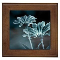 Osterspermum Framed Ceramic Tile by Siebenhuehner