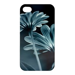Osterspermum Apple Iphone 4/4s Premium Hardshell Case by Siebenhuehner