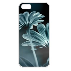 Osterspermum Apple Iphone 5 Seamless Case (white) by Siebenhuehner