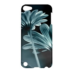 Osterspermum Apple Ipod Touch 5 Hardshell Case by Siebenhuehner