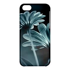 Osterspermum Apple Iphone 5c Hardshell Case by Siebenhuehner