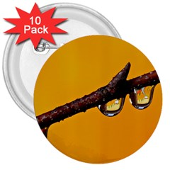 Tree Drops  3  Button (10 Pack) by Siebenhuehner