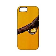 Tree Drops  Apple iPhone 5 Classic Hardshell Case (PC+Silicone)
