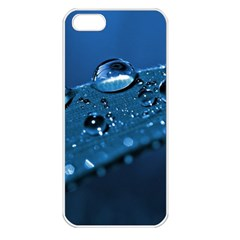 Drops Apple Iphone 5 Seamless Case (white) by Siebenhuehner