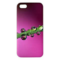 Drops Iphone 5s Premium Hardshell Case by Siebenhuehner