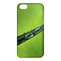 Green Drops Apple Iphone 5c Hardshell Case by Siebenhuehner