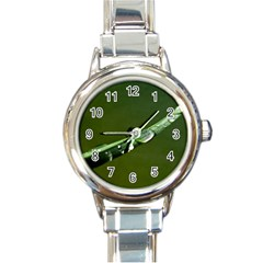 Grass Drops Round Italian Charm Watch by Siebenhuehner