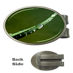 Grass Drops Money Clip (oval) by Siebenhuehner