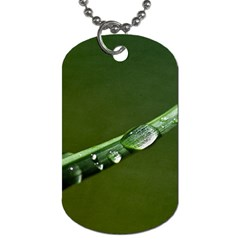 Grass Drops Dog Tag (one Sided) by Siebenhuehner