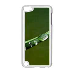 Grass Drops Apple Ipod Touch 5 Case (white) by Siebenhuehner