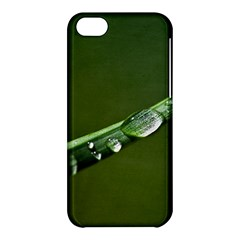 Grass Drops Apple Iphone 5c Hardshell Case by Siebenhuehner