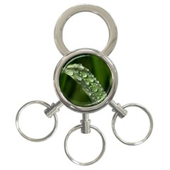 Grass Drops 3 Ring Key Chain by Siebenhuehner