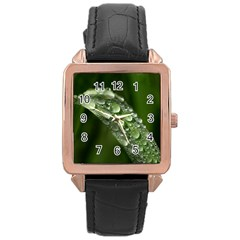 Grass Drops Rose Gold Leather Watch  by Siebenhuehner