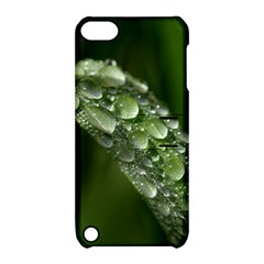 Grass Drops Apple Ipod Touch 5 Hardshell Case With Stand by Siebenhuehner