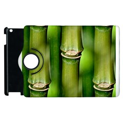 Bamboo Apple Ipad 3/4 Flip 360 Case by Siebenhuehner