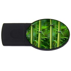 Bamboo 4gb Usb Flash Drive (oval) by Siebenhuehner