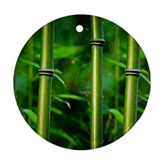 Bamboo Round Ornament (two Sides) by Siebenhuehner