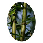 Bamboo Oval Ornament Front