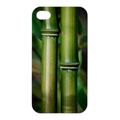 Bamboo Apple Iphone 4/4s Hardshell Case by Siebenhuehner
