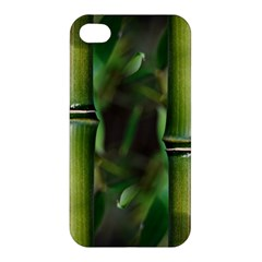 Bamboo Apple Iphone 4/4s Premium Hardshell Case by Siebenhuehner