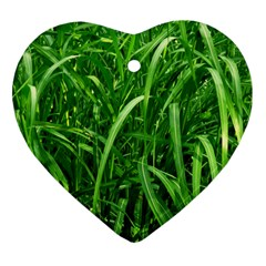 Grass Heart Ornament by Siebenhuehner