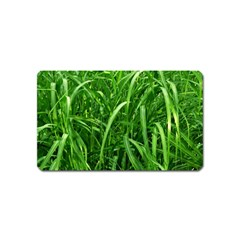 Grass Magnet (name Card) by Siebenhuehner